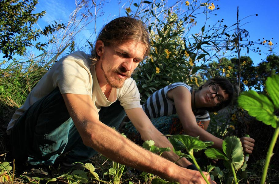 EkoBiz – Promotion of Youth Entrepreneurship in the Organic Agriculture Sector